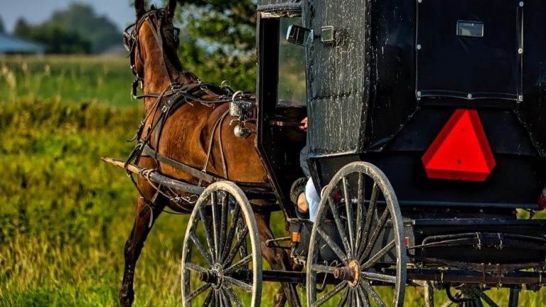 The Amish Community And Coronavirus—What Can We Learn?